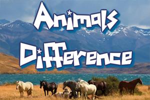 Állatos különbségkereső
